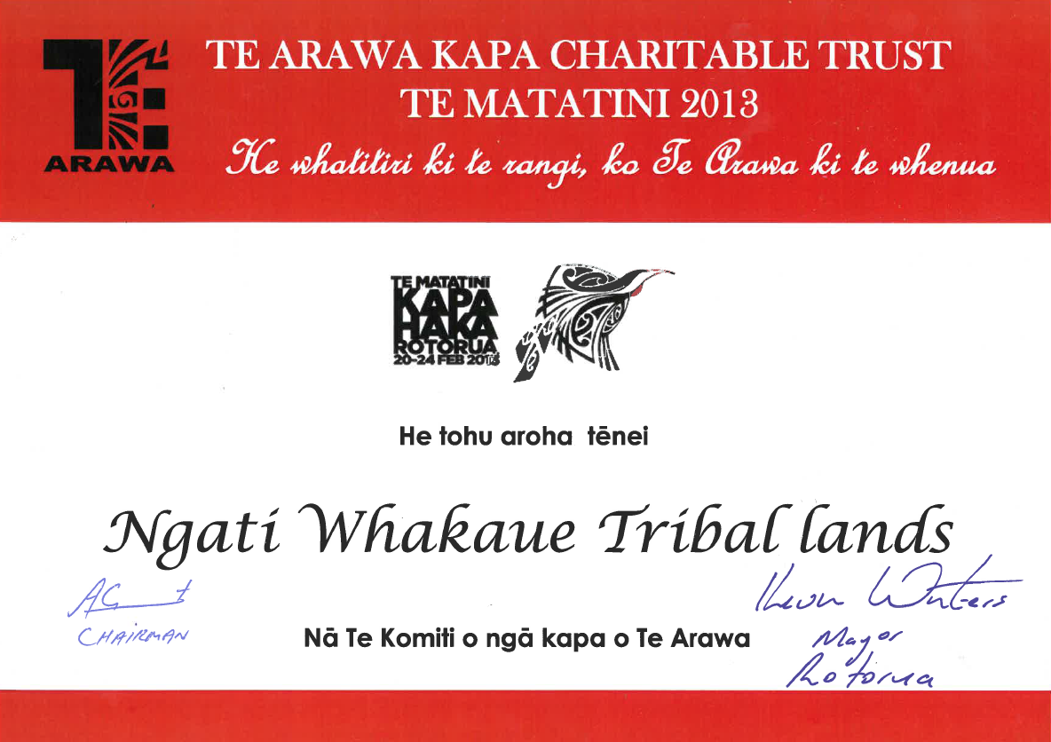 Support for Te Matatini 2013